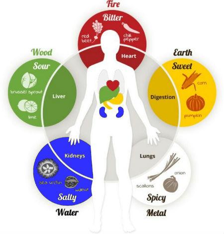 5 essential organs
