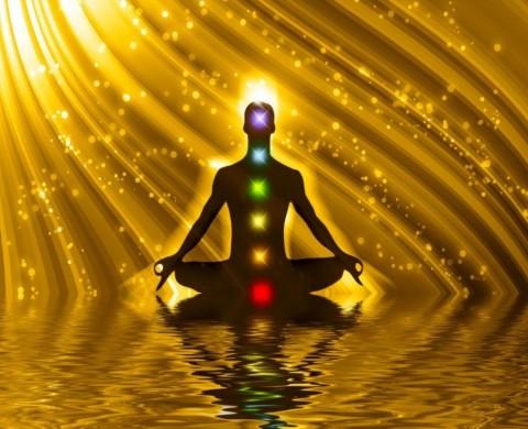 healing raleigh